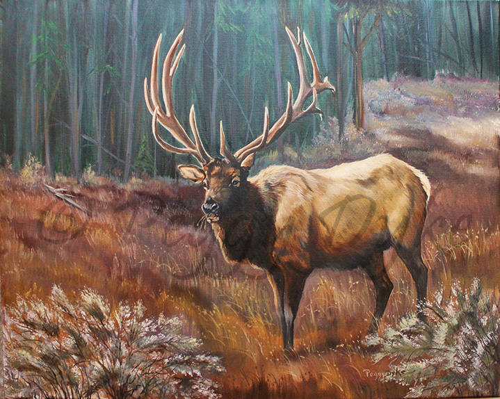 Big Barn Ranch Philosophy River Deer Elk Bathroom Polyester Shower Curtain Waterproof 60x72 Inch